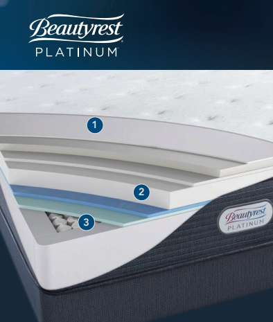 beautyrest platinum cutaway