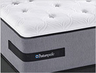 Sealy Plush Mattresses