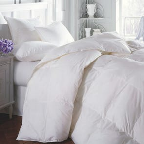 Downright Sierra All Season Comforter