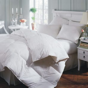 Downright Astra Summer Comforter