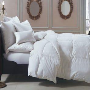 Downright Bernina Summer Comforter