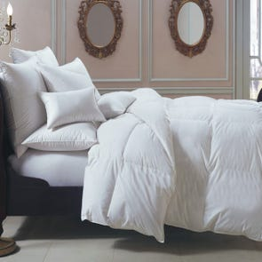Downright Bernina Winter Comforter