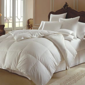 Downright Himalaya Polish Winter Comforter