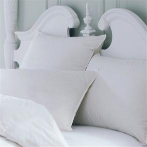 Downright All Cotton Boudoir Pillow Protector