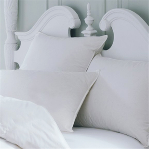 Downright All Cotton Euro Pillow Protector
