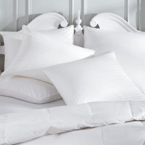 Downright Damask Euro Pillow Protector