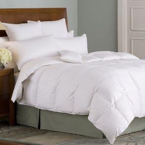Downright Organa 650 Fill Goose Down Winter Oversized Queen Comforter