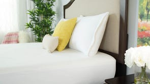 Protect-A-Bed Naturals Signature Standard Pillow Protector