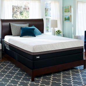Queen Sealy Posturepedic Conform Premium Gratifying Firm 12.5 Inch Mattress + FREE $200 Visa Gift Card