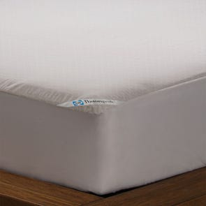 Clearance Sealy Posturepedic Allergy Protection Queen Mattress Encasement by DOWNLITE OVLB0818086