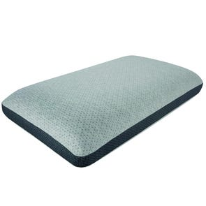 Simmons Beautyrest Complete Absolute Beauty Memory Foam Queen Pillow
