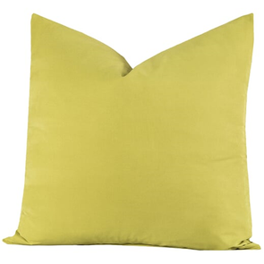 SIS Covers Crayola 20 x 20 Pillow in Inchworm