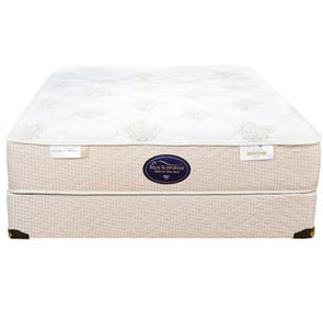 Twin Spring Air Back Supporter Perfect Balance Alexis Plush Mattress