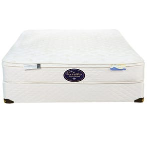 Twin Spring Air Back Supporter Value Landry Euro Top Mattress