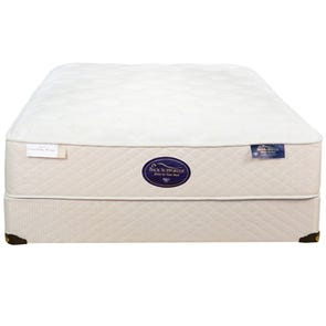 Queen Spring Air Back Supporter Latex Simplicity Plush Mattress