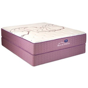Full Spring Air Sleep Sense Hybrid Plus Level I Firm 14 Inch Mattress