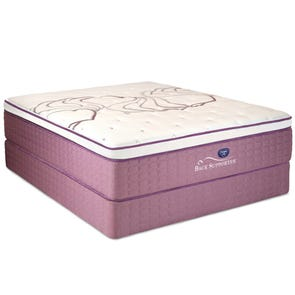 Queen Spring Air Sleep Sense Hybrid Plus Level IV Luxury Firm Euro Top Mattress