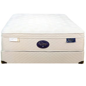 Spring Air Back Supporter Latex Sunset Euro Top Queen Mattress OVML091926