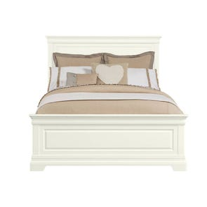 Stone & Leigh Teaberry Lane Queen Panel Bed in Stardust