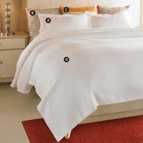 Wildcat Territory Seascape Bedding Set