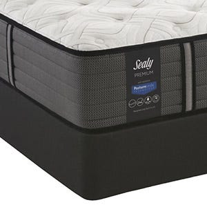 Sealy Response Premium Warrenville Cushion Firm photo