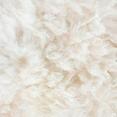Up close image of Joma wool