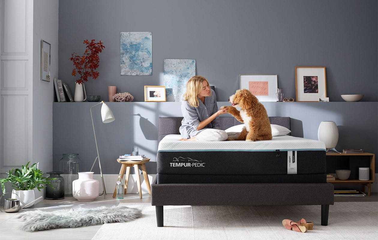 Woman and dog sitting on a pro-adapt mattress in a decorated room